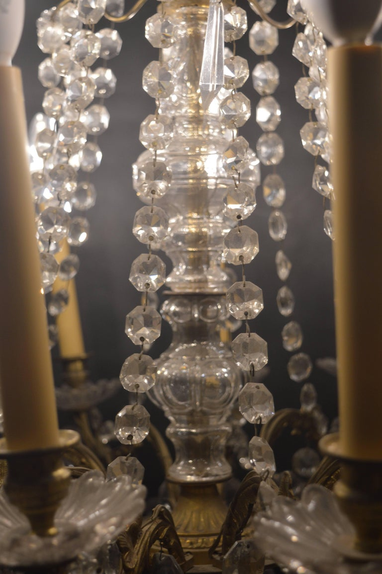 French Chandelier For Sale 1