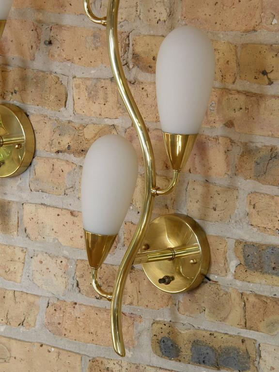 Pair of Brass and Glass Flora Form Wall Lamps 7