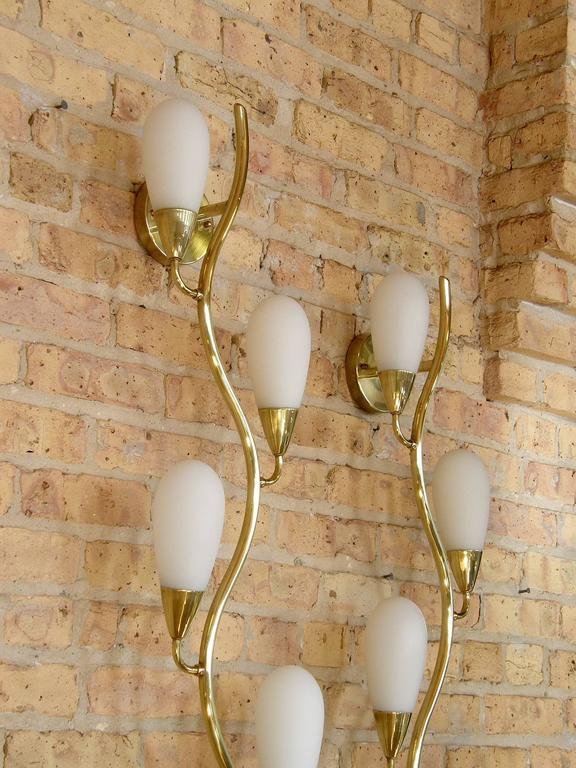 Pair of Brass and Glass Flora Form Wall Lamps 4