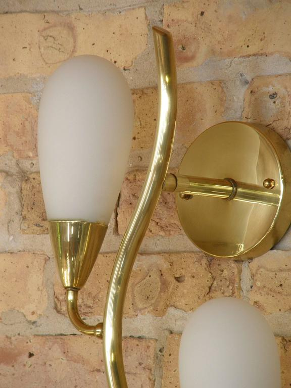Pair of Brass and Glass Flora Form Wall Lamps 6
