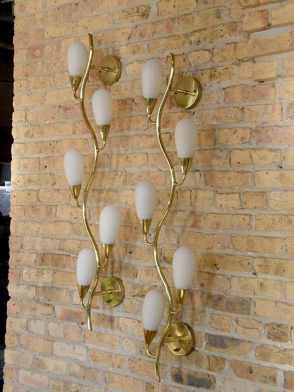 Pair of Brass and Glass Flora Form Wall Lamps 3