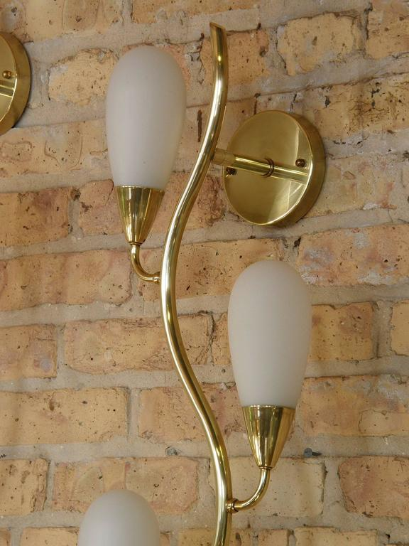Pair of Brass and Glass Flora Form Wall Lamps 5
