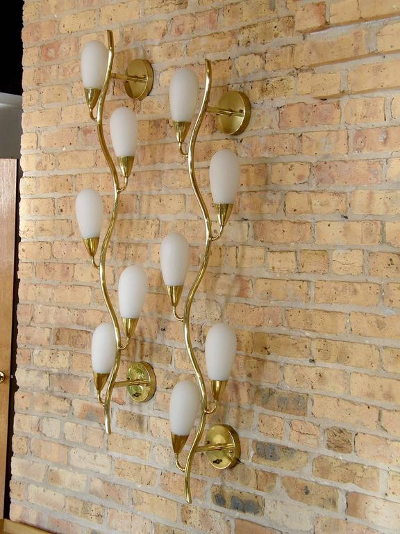 Pair of Brass and Glass Flora Form Wall Lamps 8