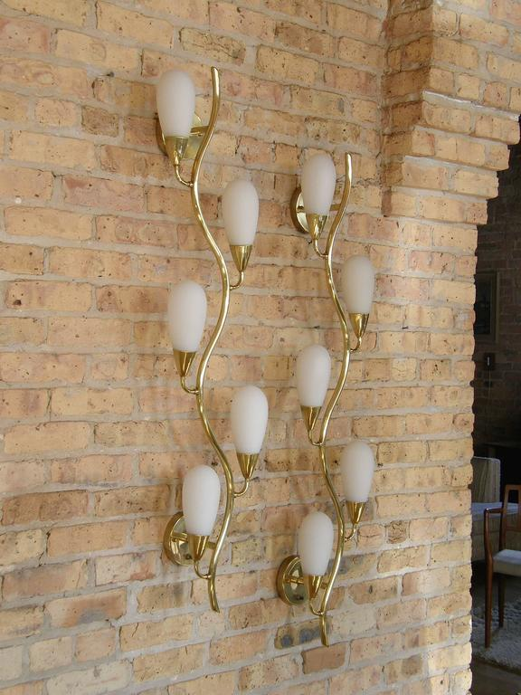 Pair of Brass and Glass Flora Form Wall Lamps 2