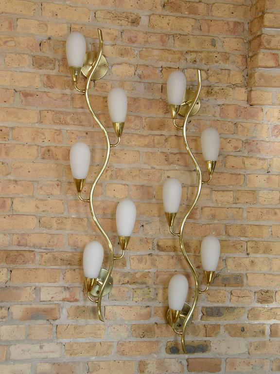 Pair of Brass and Glass Flora Form Wall Lamps 9