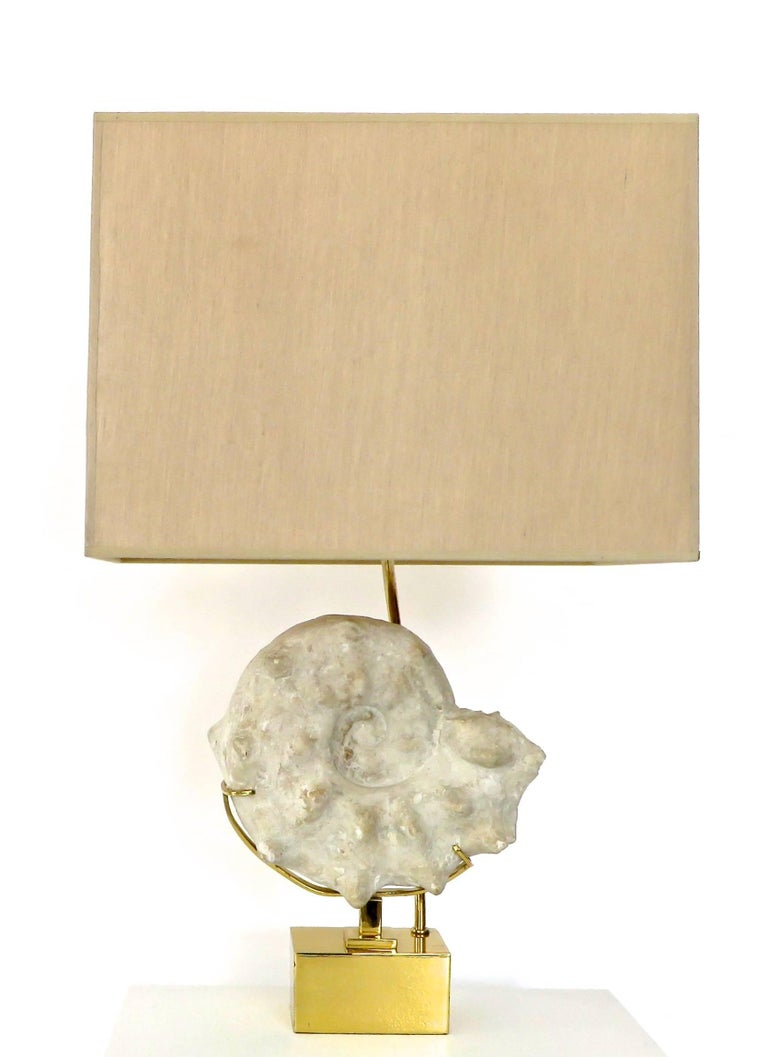 Mid-Century Modern Mounted Ammonite Belgian Specimen Lamp with Brass Base and Armature For Sale