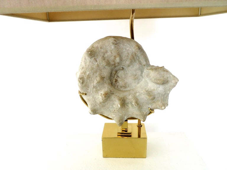 Mounted Ammonite Belgian Specimen Lamp with Brass Base and Armature For Sale 1