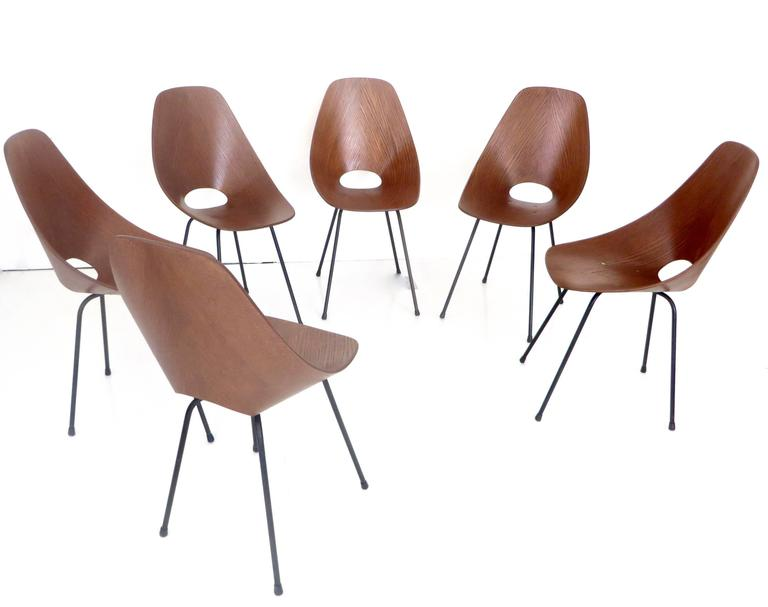 Mid-Century Modern Six Medea Dining Chairs by Vittorio Nobili for Tagliabue, Milano, circa 1960 For Sale