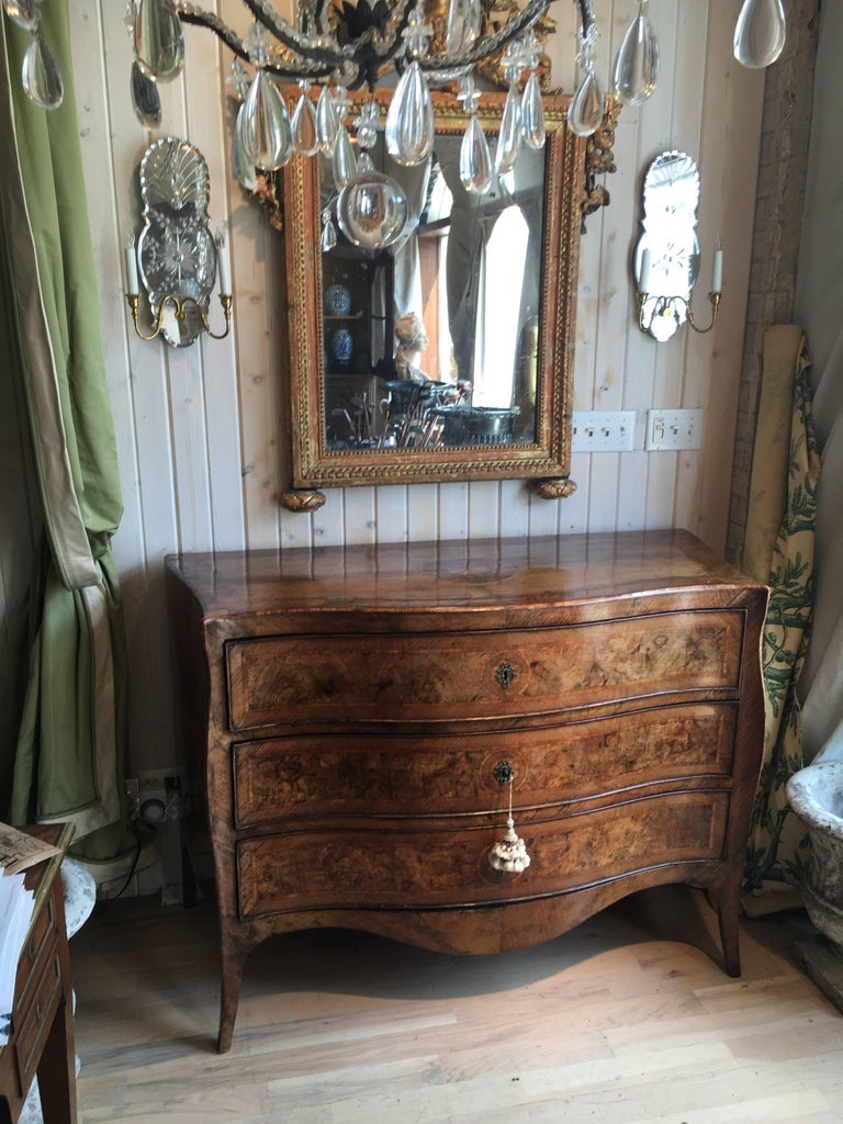 Spectacular 18th Century Italian Fruitwood and Burl Wood Commode 6