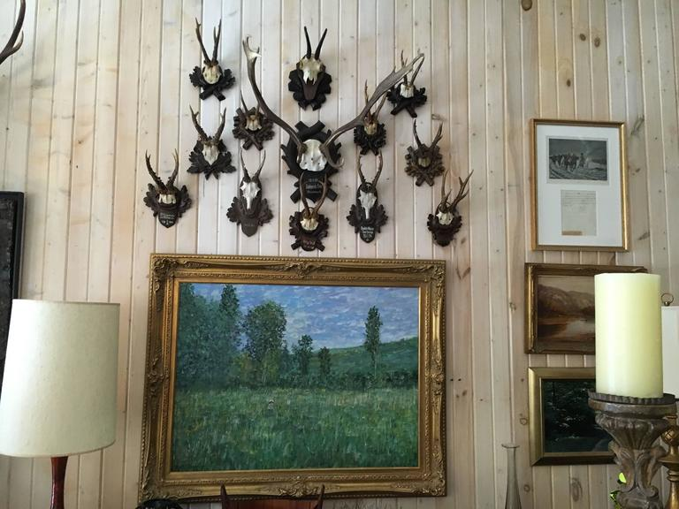 Collection of Black Forrest Mounts Including One Stag, Ten Roe and One Chinois 2