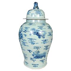 Chinese Blue and White Ginger Jar with Shizi