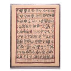 Tibetan Botanical Healer Painting