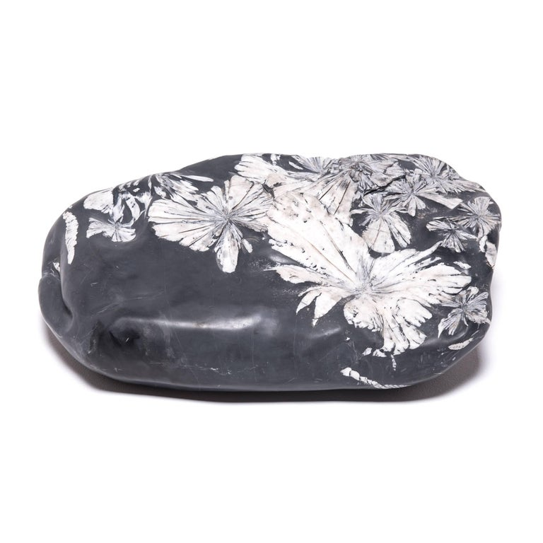 Contemporary Chinese Chrysanthemum Stone For Sale