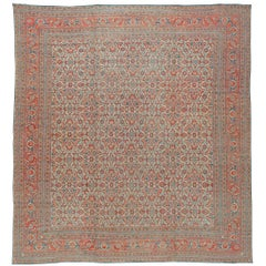 Indian Cotton Agra Carpet