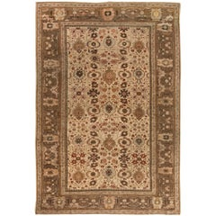 Brown Antique Persian Sultanabad Rug