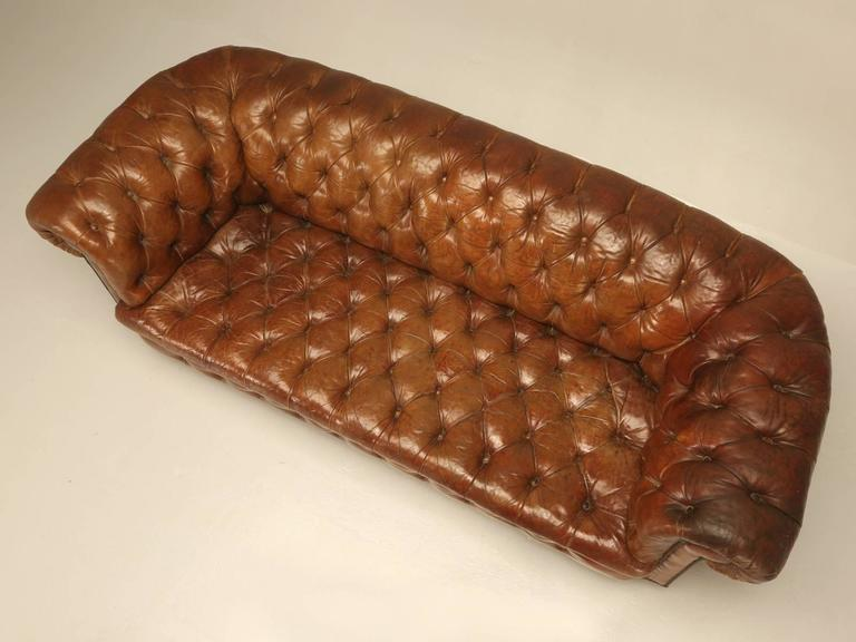 British Antique Leather Chesterfield Sofa In Original For