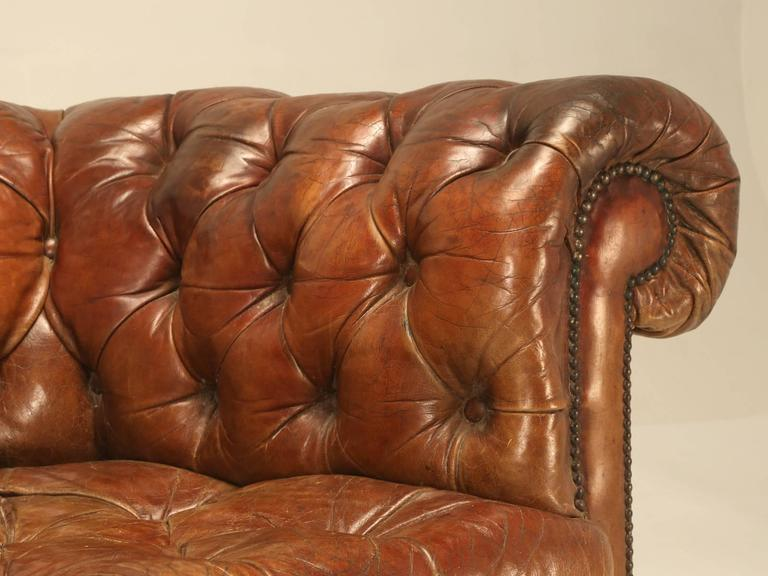Antique Leather Chesterfield Sofa In Original For