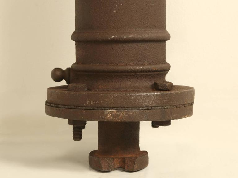 Antique French Garden Water Pump For Sale 3