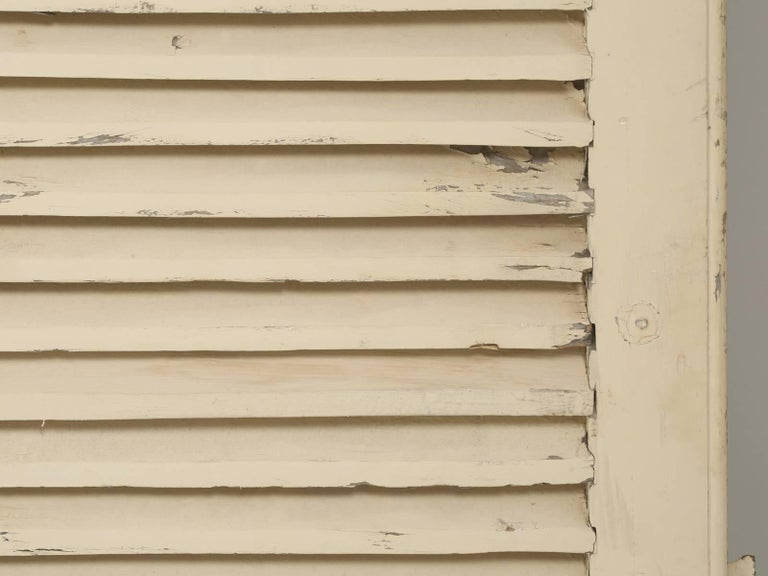 Collection of Eight Antique Painted French Shutters For Sale 3