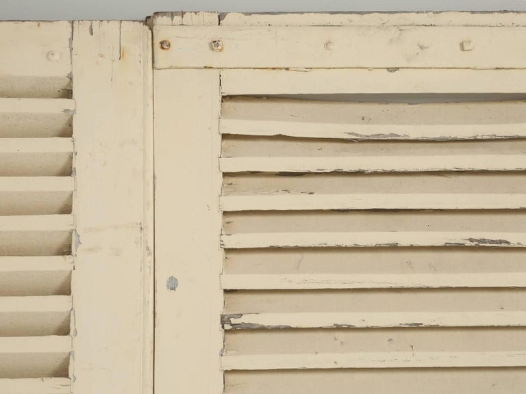 Country Collection of Eight Antique Painted French Shutters For Sale