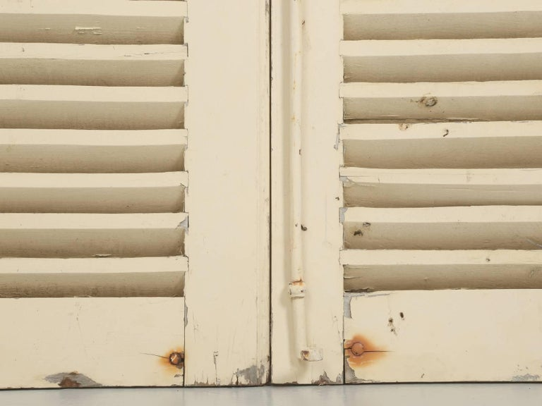 Collection of Eight Antique Painted French Shutters For Sale 4