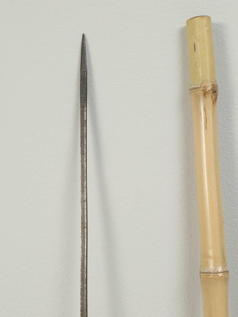 Antique French Walking Stick Or Cane From Bamboo With A