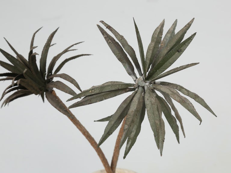 Mid-20th Century French Metal Palm Trees in Clay Pots For Sale