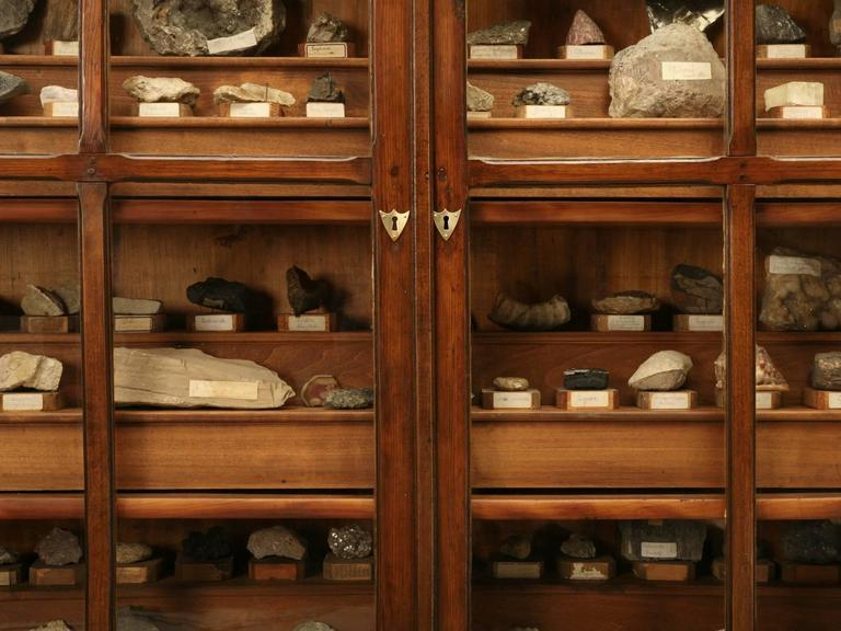 Country French Specimen Cabinet or Bookcase, circa 1891 For Sale