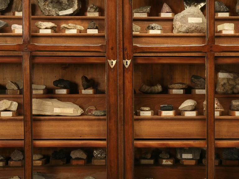 French Specimen Cabinet or Bookcase, circa 1891 3