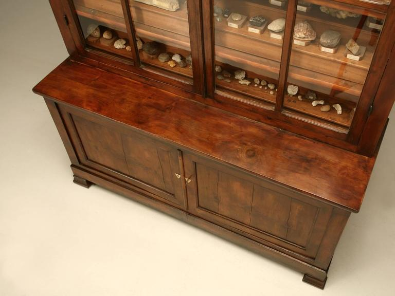 French Specimen Cabinet or Bookcase, circa 1891 In Excellent Condition For Sale In Chicago, IL