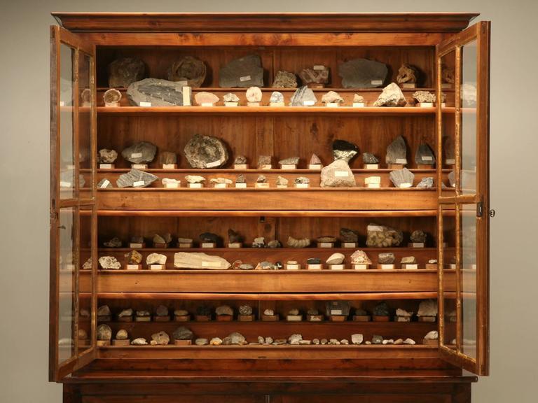 French Specimen Cabinet or Bookcase, circa 1891 For Sale 1