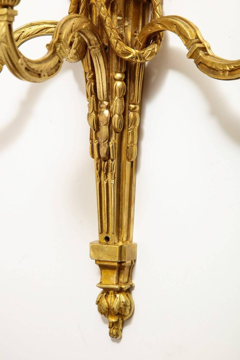 Late 19th Century Pair of Neoclassical Gilt Bronze Sconces For Sale