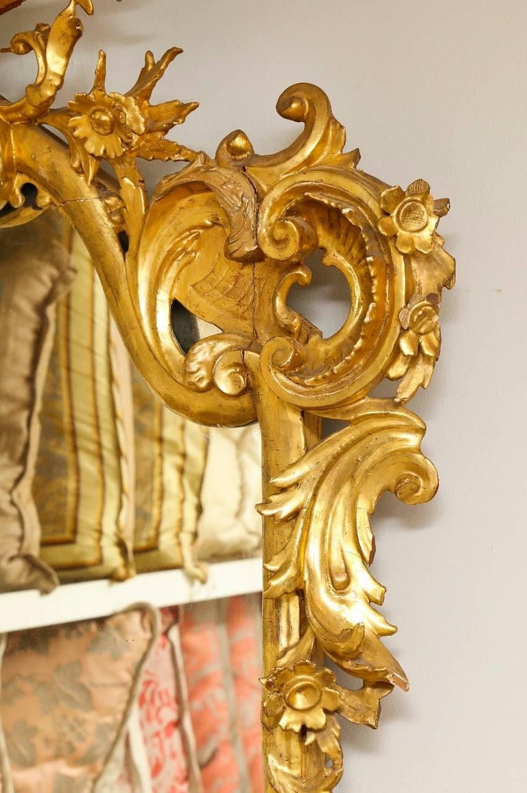 A Rococo style carved giltwood mirror, acanthus leaf form cresting and profusely carved with C-and S-scrolls surrounding a conforming rectangular mirror plate, late 19th century.