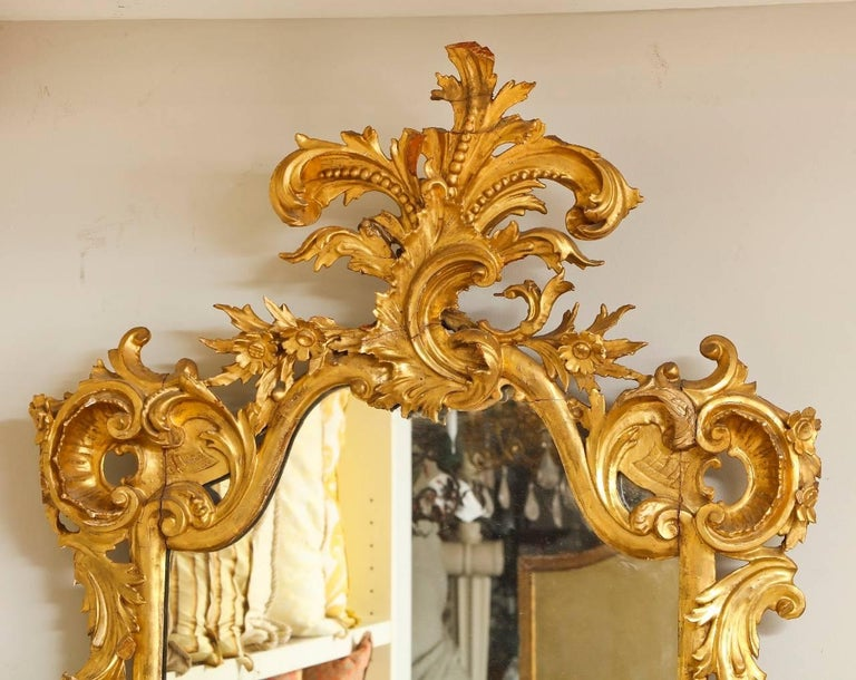 Rococo Style Carved Giltwood Mirror In Excellent Condition For Sale In New York, NY
