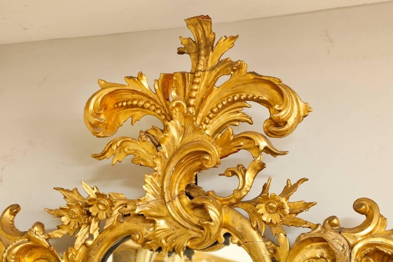 20th Century Rococo Style Carved Giltwood Mirror For Sale