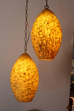 Pair of Resin Pendant Lights