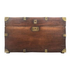 19th Century English Camphor Wood Trunk, Great Scale