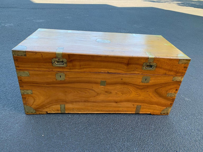 Camphor wood and brass campaign trunk, circa 1820s.