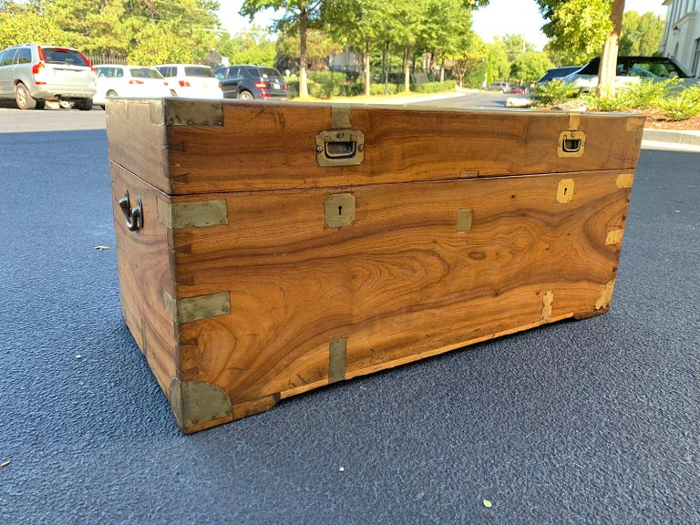 Early 19th Century Camphor Wood and Brass Campaign Trunk, circa 1820s For Sale