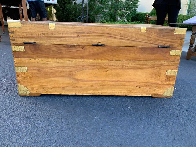 Camphor Wood and Brass Campaign Trunk, circa 1820s For Sale 2
