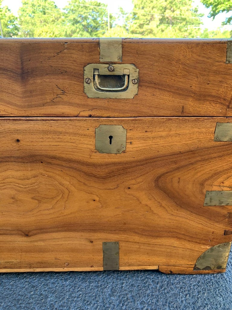 Camphor Wood and Brass Campaign Trunk, circa 1820s For Sale 4