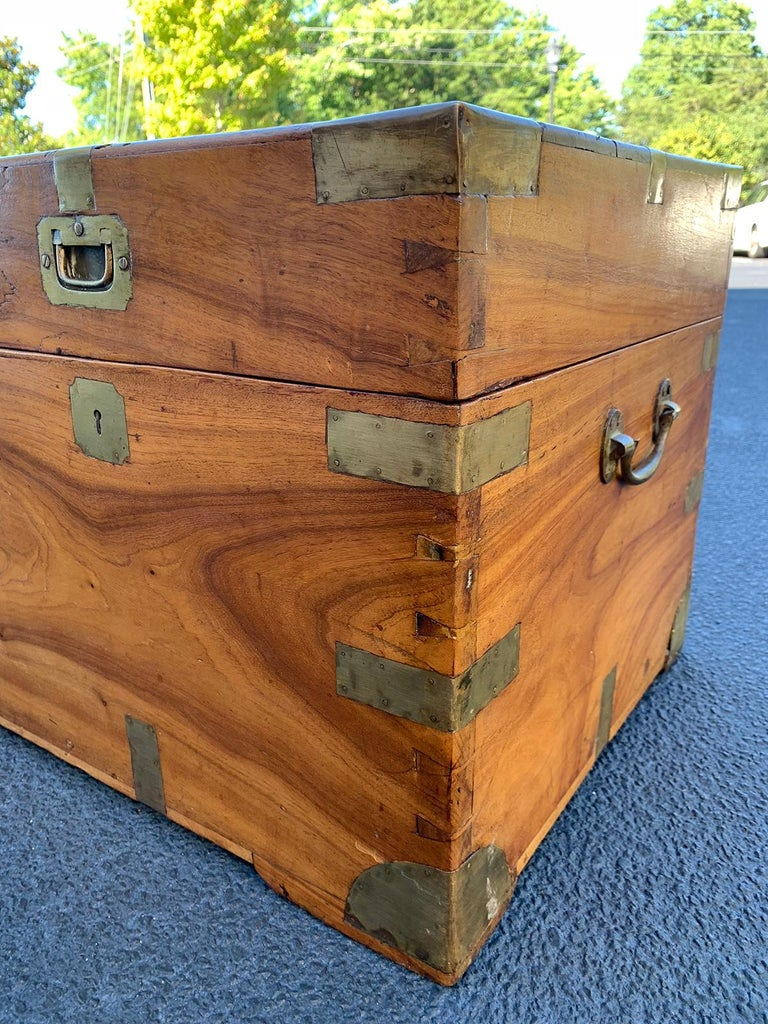 Camphor Wood and Brass Campaign Trunk, circa 1820s For Sale 5