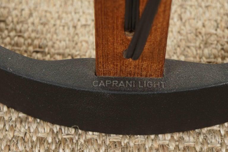 Caprani Standing Lamp For Sale 4