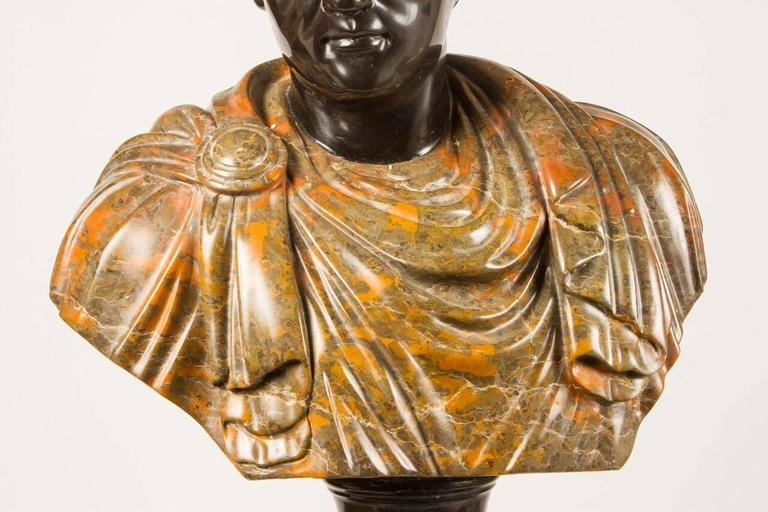 Beautiful bust representing a cloaked Roman figure. Elegant in any sitting room or library.