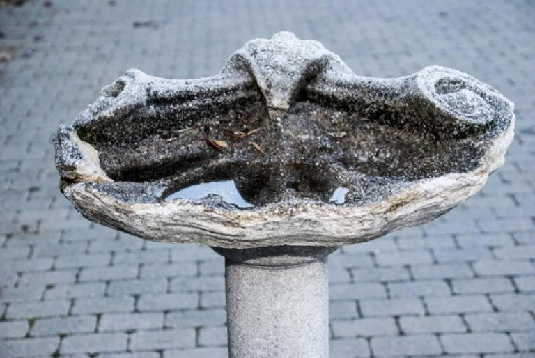 19th Century Antique Cast Stone Pedestal and Shell Form Bird Bath For Sale