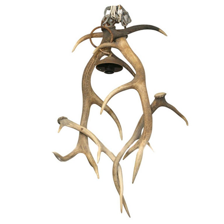 19th Century French Antler Chandelier