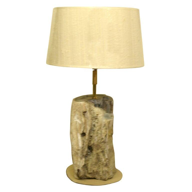 Petrified Wood Lamp For Sale