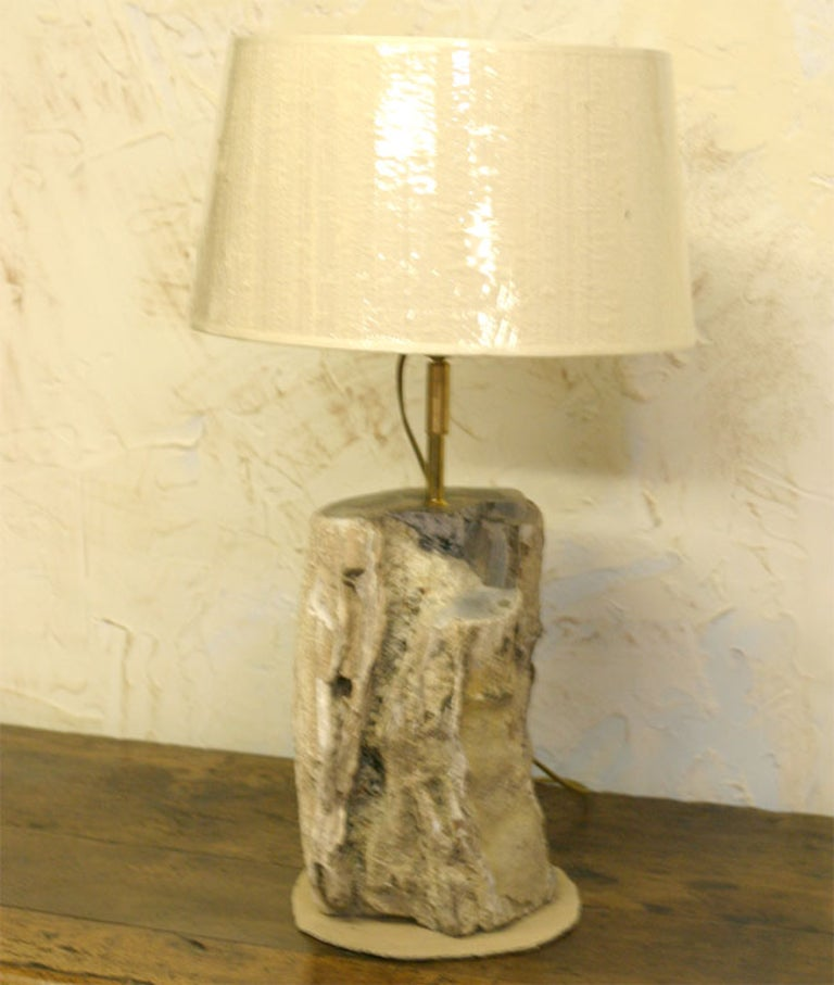 Newly made lamp base from aged petrified wood with beautiful texture and details.