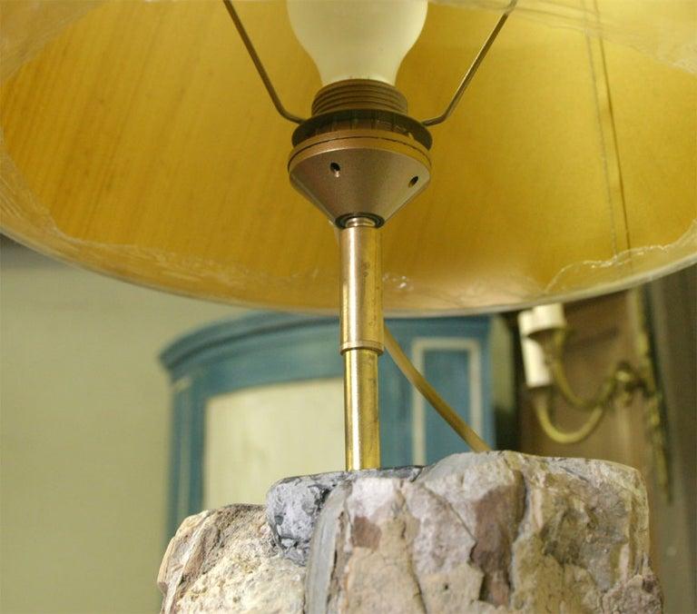 Petrified Wood Lamp For Sale 1