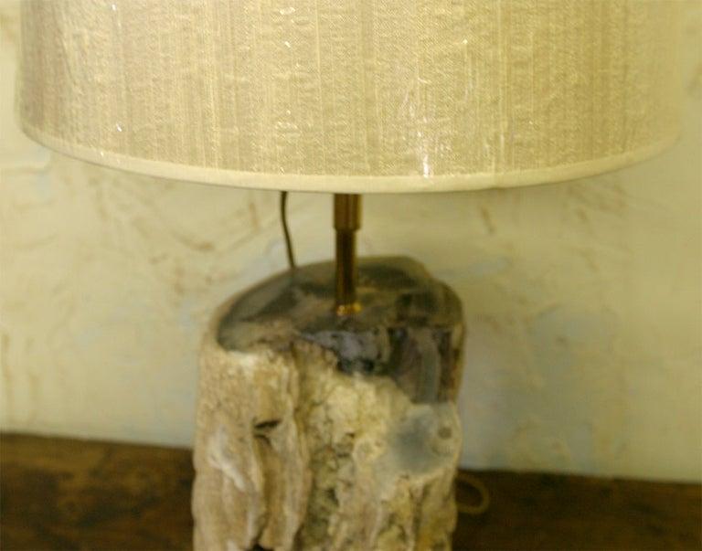 Petrified Wood Lamp For Sale 3